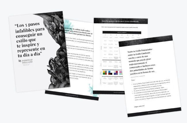 manual de identidad cliente diseño web personalizado