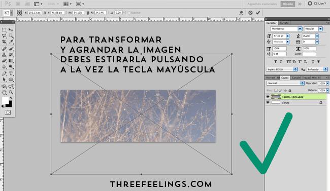 006_Transformar