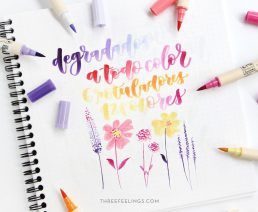 pack-rotuladores-brushables-petals-colores-lettering-threefeelings-04